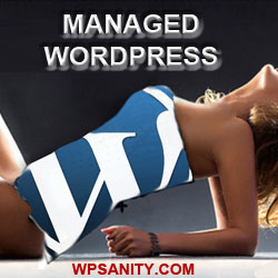 WordPress management and protection in Sacramento